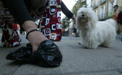 Burjassot prueba un producto natural para evitar deposiciones de animales en la vía pública
