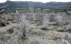 Riba-roja investiga el «pelotazo» de Porxinos