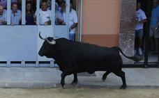 Agenda de bous al carrer del 13 y 14 de septiembre en Valencia, Alicante y Castellón