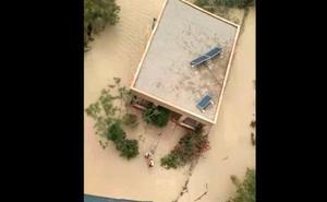 Rescatados de la catástrofe