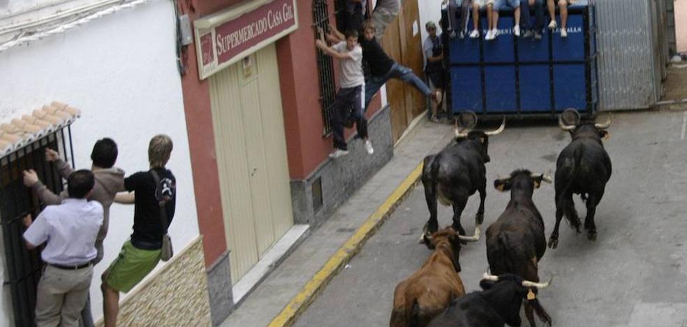 Un hombre resulta herido al ser embestido varias veces por un toro