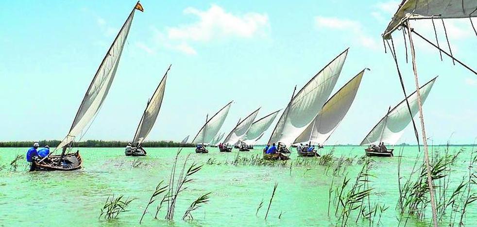 Exhibición de Vela Latina en el Port de Catarroja