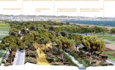 La Autopista del Saler se convertirá en una vía parque con carril bici y un solo carril por sentido