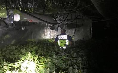 Un matrimonio monta un laboratorio de droga en su casa de Gandia