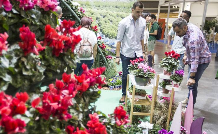 Feria Iberflora, la cita del sector verde en Valencia