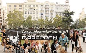 ¿Qué hacer este domingo 6 de octubre en Valencia?