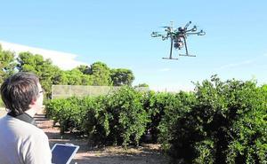 Drones para perfeccionar los cultivos