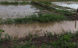 Agricultores de Sagunto reclaman una turbina para sacar el agua de sus campos
