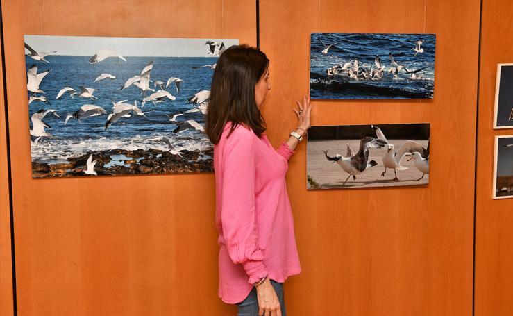 Inauguración de la exposición 'Aves a la mar' organizada por el Rotary Club Jávea en beneficio de End Polio Now