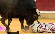 El banderillero Mariano de la Viña, de la cuadrilla de Ponce, sufre una grave cogida en Zaragoza