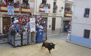 Les Corts derogan el segundo médico para los bous al carrer