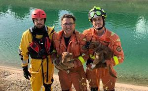Rescate de dos cachorros en el canal del río Júcar