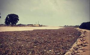 Aemet prevé lluvias de 200 l/m2 por la llegada de la DANA a la Comunitat