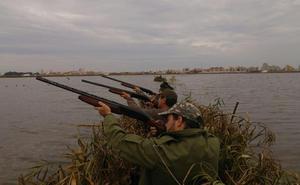 La caza lucha por sobrevivir en la Albufera