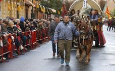 Valencia celebra San Antonio Abad con su tradicional bendición de animales