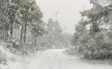 Directo | Nieve en Valencia, desalojos por las fuertes rachas de viento y cierre de carreteras, puertos y aeropuerto