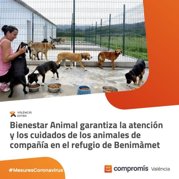 Ribó utiliza la imagen de un refugio gallego para elogiar el cuidado de perros en Valencia