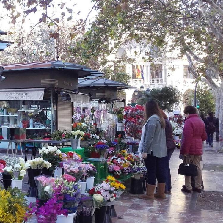 Grezzi permite aparcar en la Plaza del Ayuntamiento para comprar los ramos de Todos los Santos