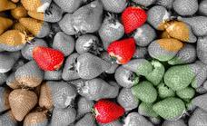 Las 29 frutas y verduras de temporada del mes de mayo