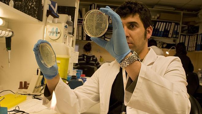 Identificados dos nuevos genes implicados en el cáncer de próstata