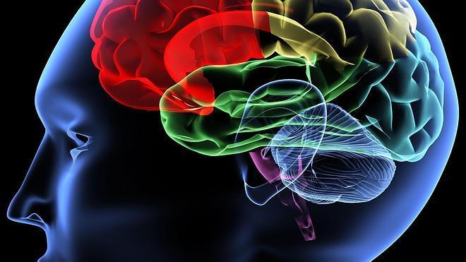 Aumentan los casos de epilepsia en España