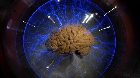 Cómo llega la cocaína al cerebro? | Las Provincias