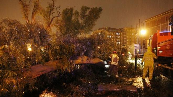 Cortes en carreteras, retraso de trenes y puertos cerrados por el temporal en la Comunitat