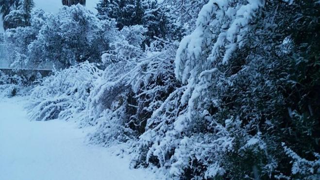 Orba amanece completamente nevada