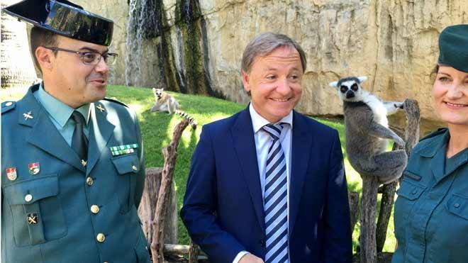 La Guardia Civil entrega al Bioparc un lémur que una vecina de Valencia se encontró en la calle