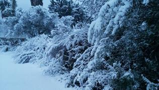 Fotos de la nevada en Orba